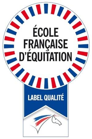 Ffe logo ecole francaise dequitation
